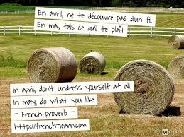 french phrases in english sayings proverb and quotes