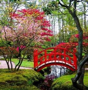 japanese_garden_4